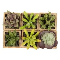 Juvale Faux Succulents - 6-Pack Decorative Artificial Plants, Assorted Potted Fake Succulent Plants Home Garden Decorations, Office Desk Decor, Weddings