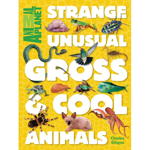 Strange Unusual Gross Cool Animals