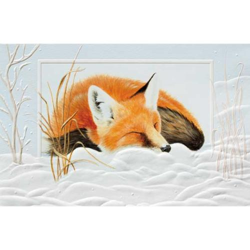 Pack of 16 Fox Dreaming Fine Art Embossed Deluxe Christmas Greeting Cards