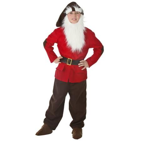 Kids Dwarf Costume - The 7 Dwarfs Halloween Costumes