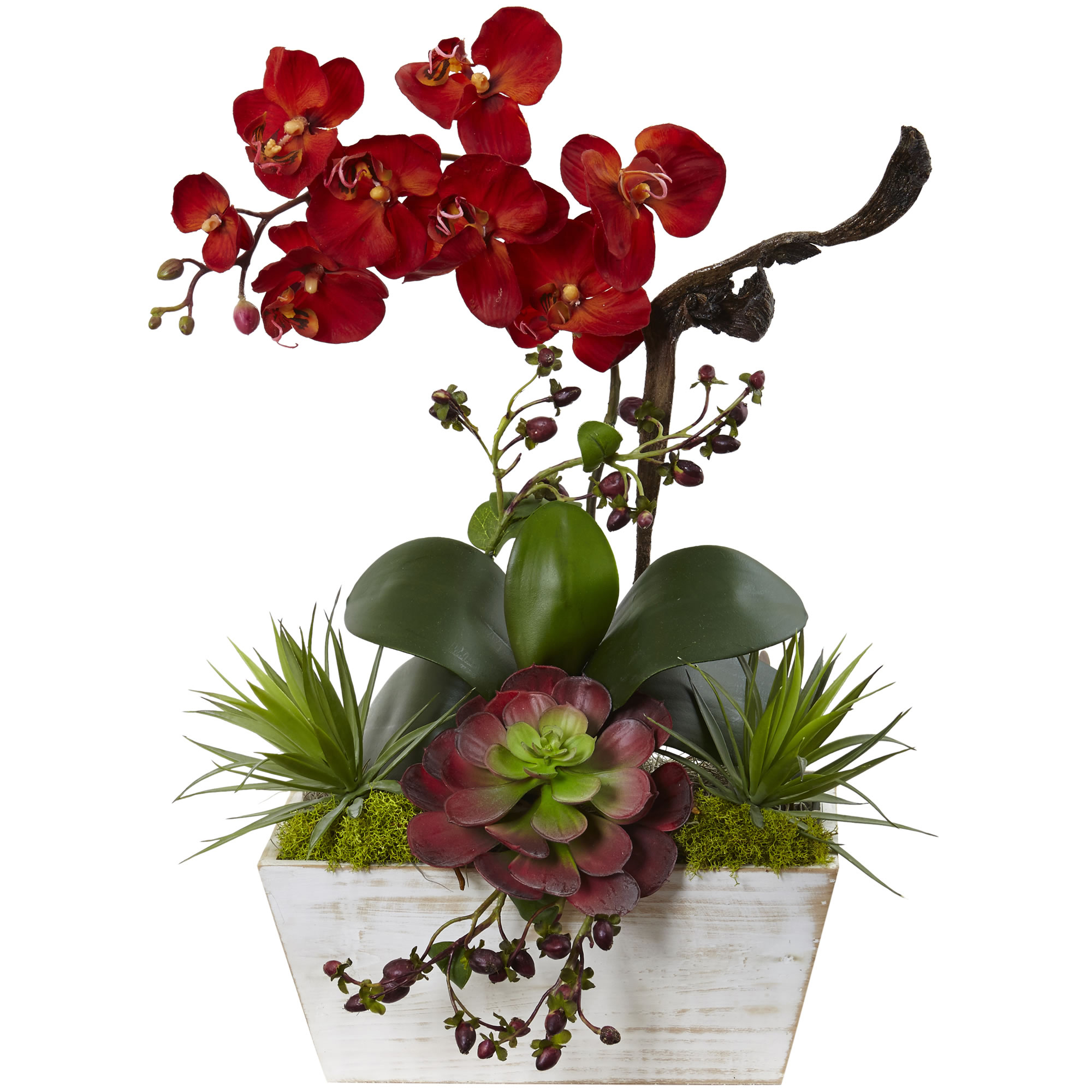 Nearly Natural Seasonal Orchid & Succulent Garden w/White Wash Planter