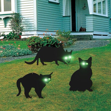 CHICIRIS Stop Pest Control Scarer,3 x Metal Scarers Cats Stop Pest Control Get Rid Pests Garden (Best Way To Get Rid Of Silverfish)