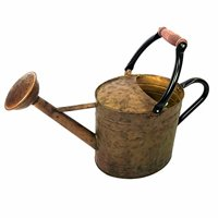 Gardener Select 3.5L Water Can Rusty Wood Hd