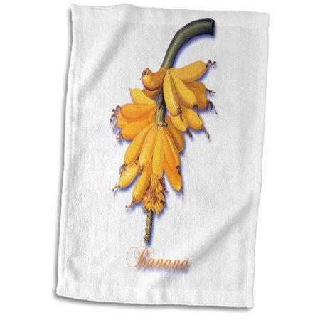 3dRose Banana, Botanical Print of a Bright Yellow Bunch of Bananas - Towel, 15 by 22-inch ()