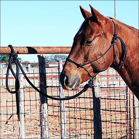 Classic Nylon Halters - CLASSIC EQUINE HORSE NYLON ROPE HALTER W/ LEAD BLACK