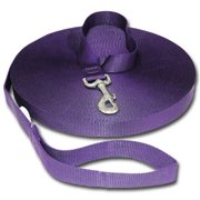 Strapworks TRL-DL1-40FT 1 W inch Polyester Training Leash - 40 ft.