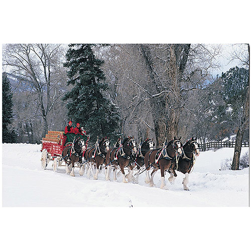 "Trademark Fine Art ""Budweiser Clydesdales Snowing in the Forest"" Canvas Art"