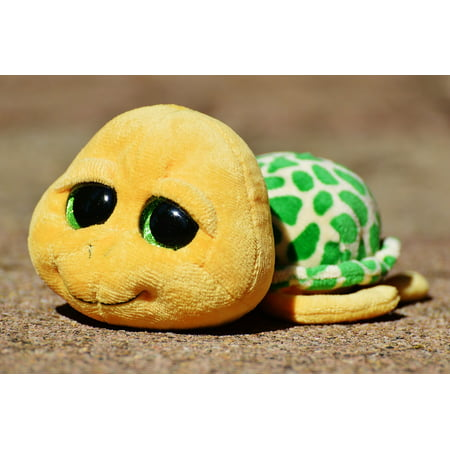 Framed Art For Your Wall Toys Turtle Soft Toy Stuffed Animal Cute