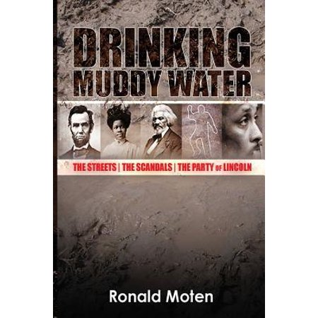 Lincoln Party (Drinking Muddy Water : The Streets, the Scandals, the Party of)