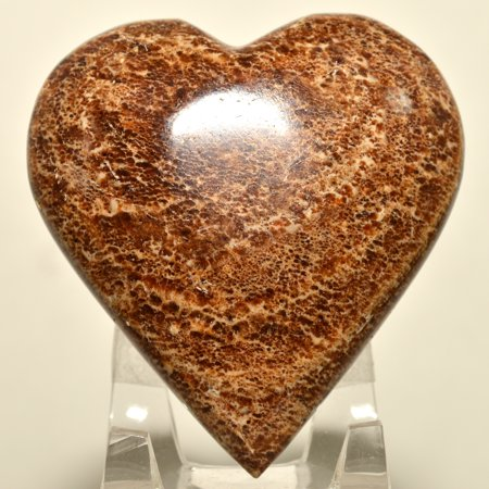 Aragonite Crystal - Heart Shaped Brown Aragonite Crystal Polished Natural Decor Mineral Palm Stone - Peru + Acrylic Display Stand