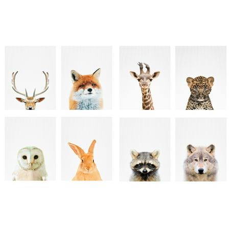 Adorable Deer, Fox, Leopard, Giraffe, Rabbit, Owl, Raccoon and Wolf Photography Set; Eight 8x10in Paper Poster Prints
