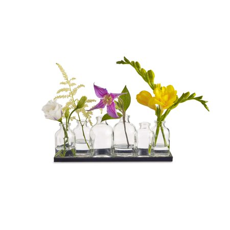 Design Ideas Buddy Bud Vases, Set of 6](Bud Vases Bulk)