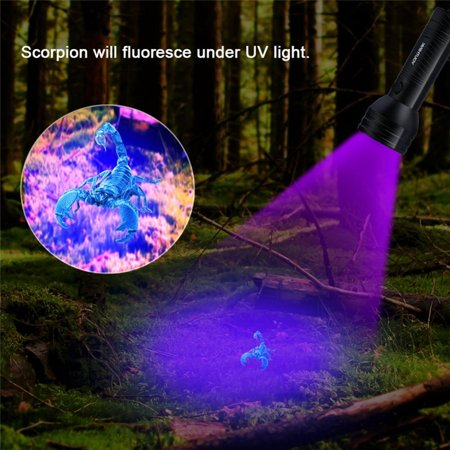 Uv Led Torch Ultraviolet Flashlight Scorpion Detector Hunter Ultra Violet Blacklight For Home
