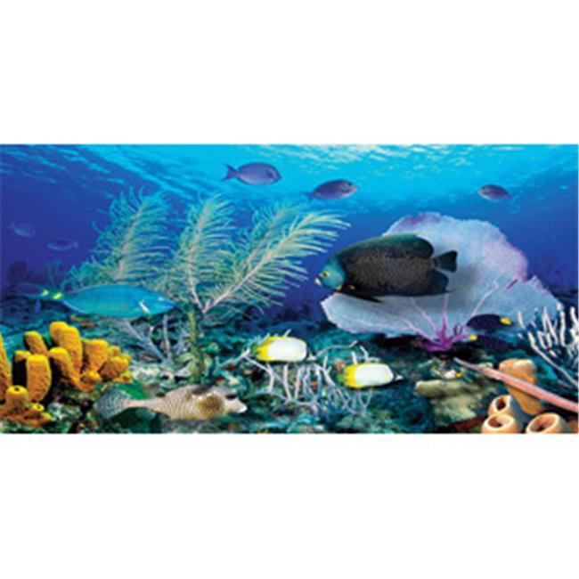 Biggies WM-ORF-80 Ocean Reef Wall Murals  - Each