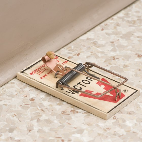 Victor 8 Pack Metal Pedal Mouse Trap Walmart