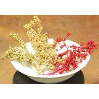 Dried Canella Berries - Canela Decorative 8 oz -- Bulk Case of 1000 branches - natural