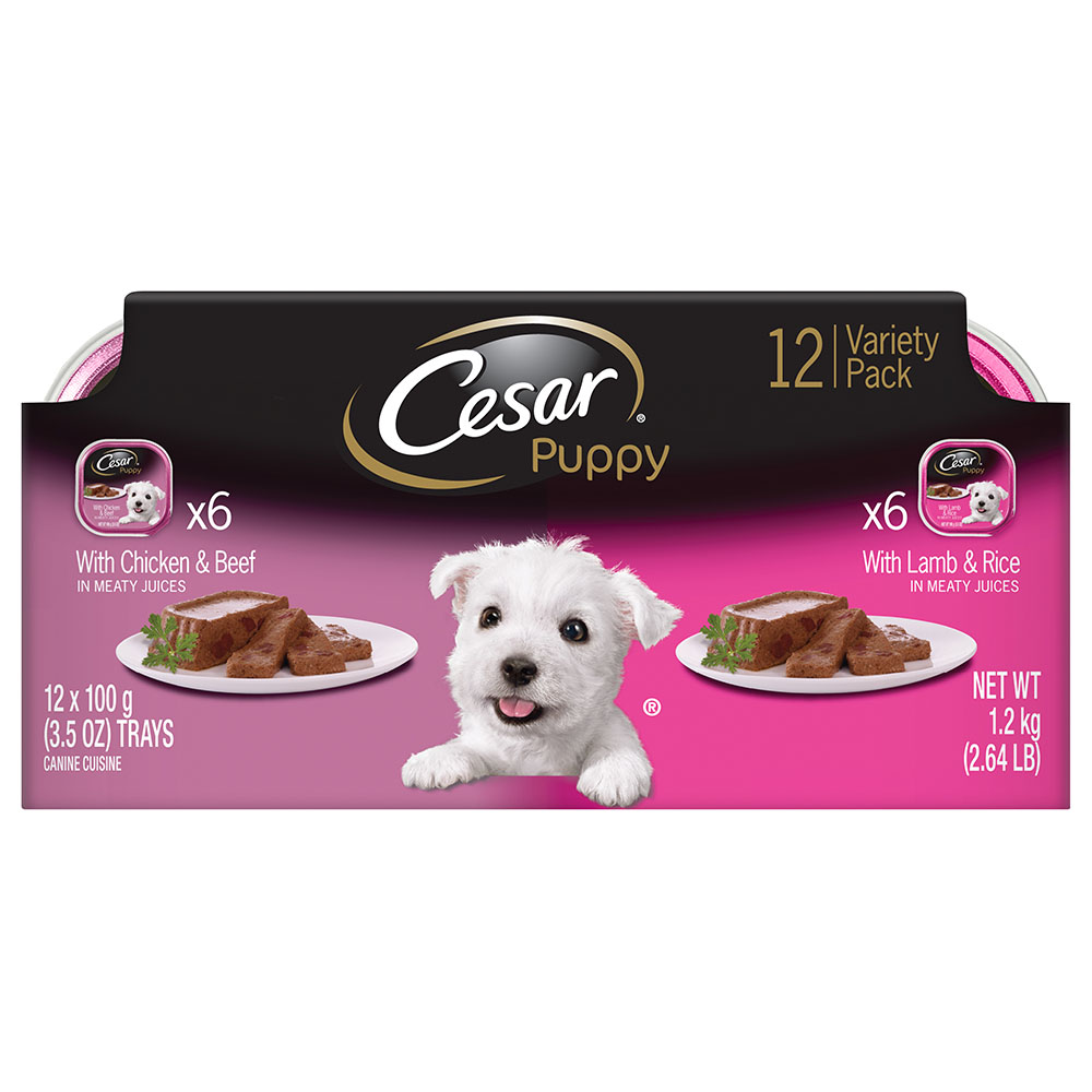 CESAR Canine Cuisine Variety Pack Chicken and Beef and Lamb and Rice Puppy Food (12 Count) by Mars Petcare