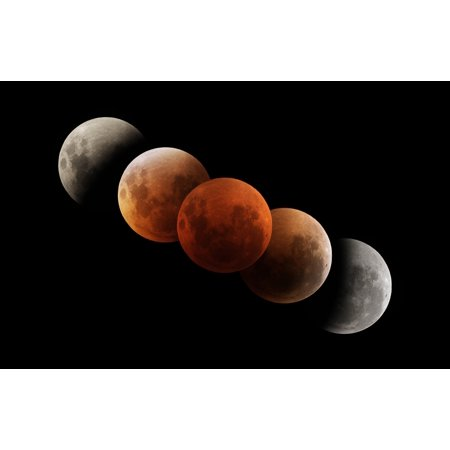 Composite Image Of Lunar Eclipse Canvas Art   Philip Hartstocktrek Images  36 X 23