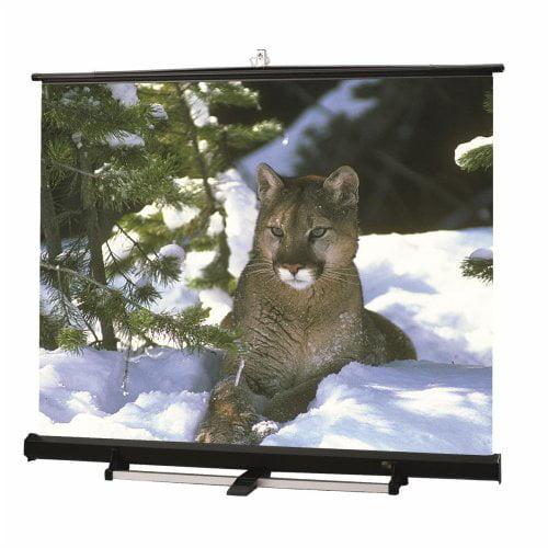 Draper Matte White Luma 2 / R Portable Screen - 15' NTSC ...