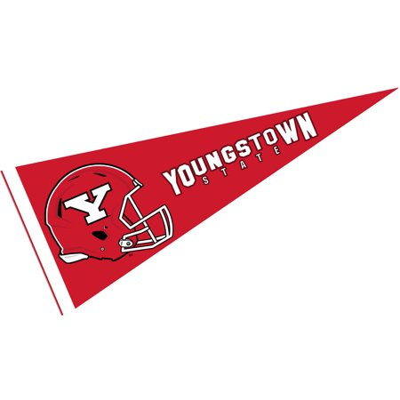 Youngstown State University Penguins Football Helmet 12