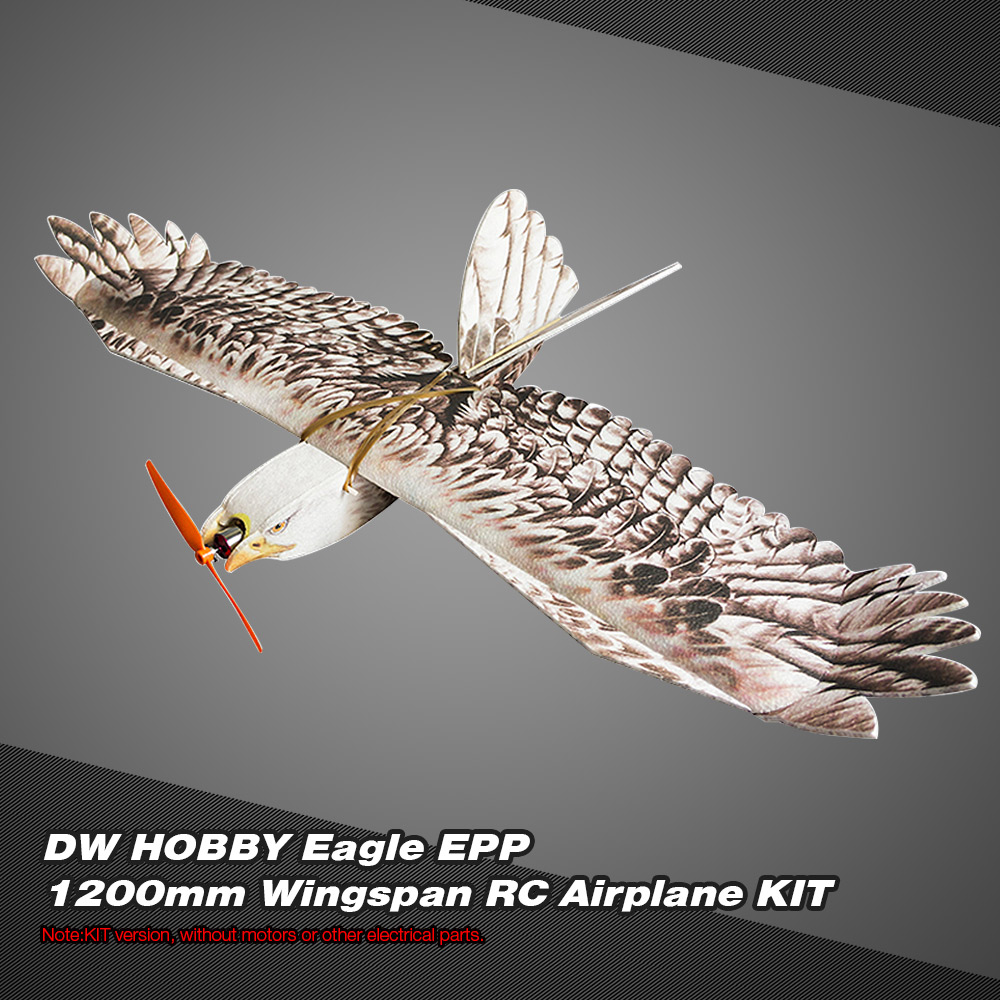 DW HOBBY Biomimetic Eagle EPP Mini Slow Flyer 1200mm Wingspan RC Airplane KIT by