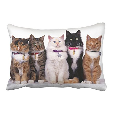 WinHome Five Cute Cats Black And Brown And White With Bells Decorative Pillowcases With Hidden Zipper Decor Cushion Covers Two Side 20x30 inches