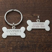 Personalized Cat or Dog Key Chain and Charm Set