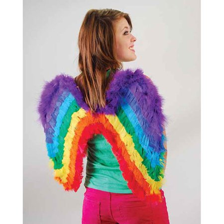 Pony Womens City Wings (Adult Rainbow Feather Wings Costume My Little Pony Dash Princess Fairy Fantasy )
