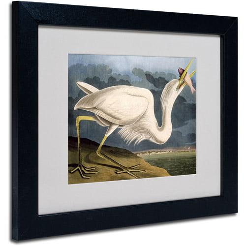 "Trademark Fine Art ""Great White Heron"" Canvas Art by John James Audubon, Black Frame"