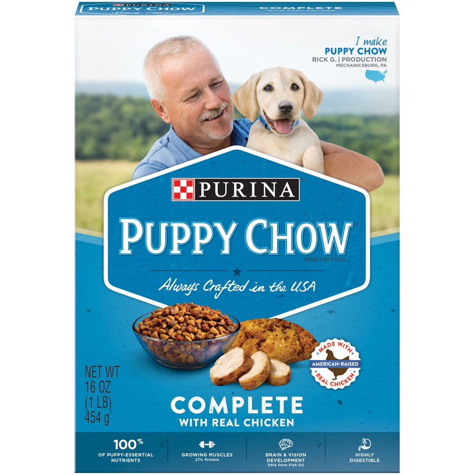 Purina Puppy Chow Complete Dry Dog Food, 16 Oz.