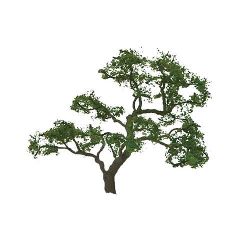 "Pro Tree, Beech 1.5"" (4) Multi-Colored"