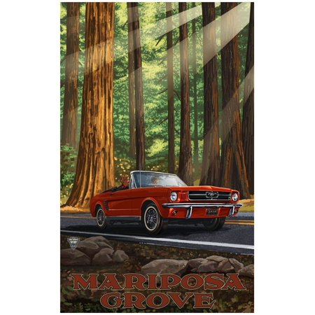 UPC 047906291323 product image for Mariposa Grove California Mustang in Redwoods Travel Art Print Poster by Paul A. | upcitemdb.com