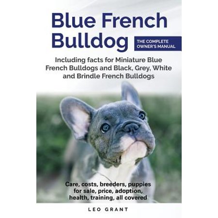 Blue French Bulldog : Care, Costs, Price, Adoption, Health, Training and How to Find Breeders and Puppies for Sale. Includes Facts for Miniature, Black, Grey, White and Brindle French Bulldogs.