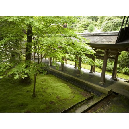 Ryoanji Temple Moss Garden, Ryoan-Ji Temple, Unesco World Heritage Site, Kyoto City, Honshu, Japan Print Wall Art By Christian Kober (Ryoanji Temple)