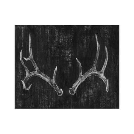 Antler Art - Rustic Antlers II Print Wall Art By Ethan Harper