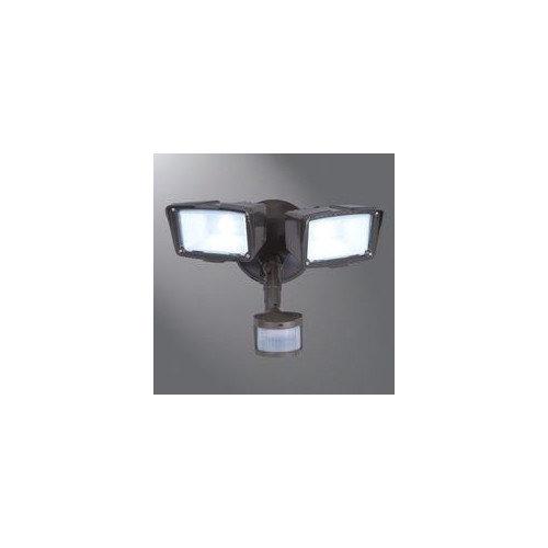 Cooper Lighting Motion Security 2 Light Semi-Flush Mount