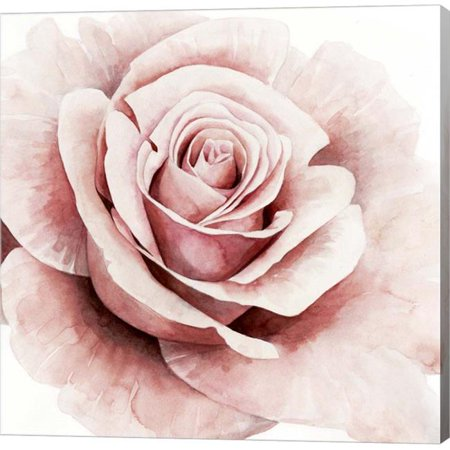 Rose Canvas Wall - Metaverse C947772-0120000-AAAACMA Pink Rose I by Grace Popp Canvas Wall Art - 12 x 12 in.