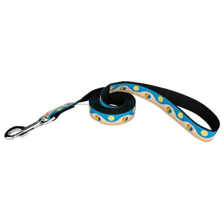 Country Brook Design  Beachball And Sun Ribbon Dog Leash