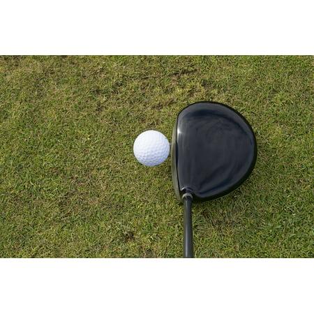 Framed Art for Your Wall Golfing Golf Grass Golf Ball Golf Club Sport Ball 10x13 Frame ()