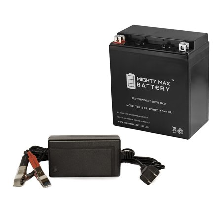 YTX16-BS Replaces Motorrad BMW 1200 R1200RT 14-16 + 12V 4Amp Charger (Motorrad Sonnenbrillen)