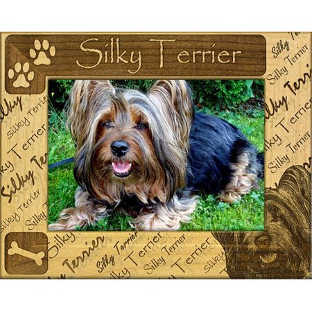 Giftworks Plus DBA0159 Silky Terrier Alder Wood Frame, 3.5 x 5 In - image 1 de 1
