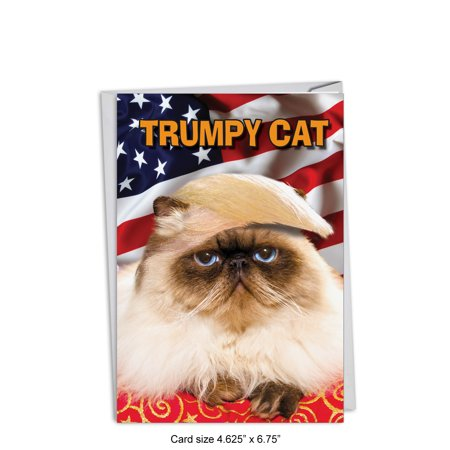 C4658BDG Funny Birthday Greeting Card Trumpy Cat With Envelope By NobleWorks