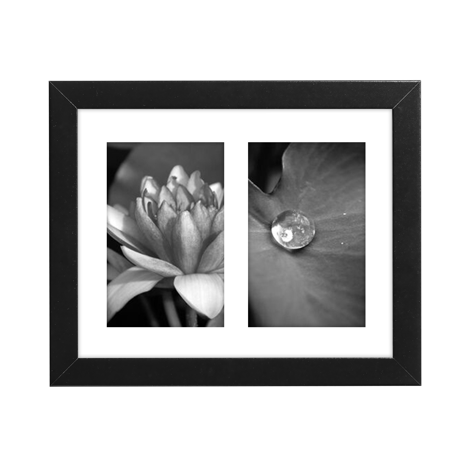8x10 inch Black Collage Picture Frame with Two 4x6 inch Openings, Glass Front