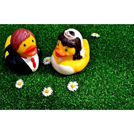 LAMINATED POSTER Rubber Ducks Bride And Groom Funny Marry Wedding Poster Print 24 x 36