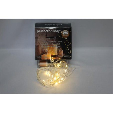20 LED Timer Copper String Light Battery Operated - Warm White