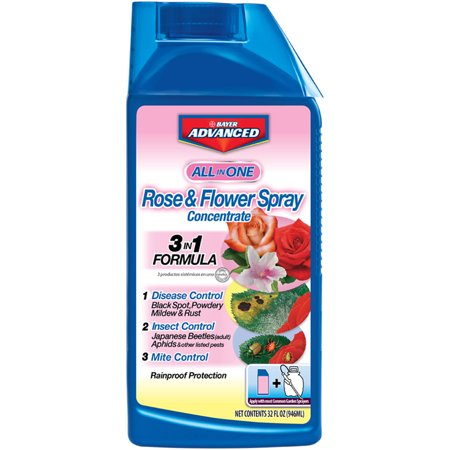 Image of Bayer All-in-One Rose 32 oz Concentrate