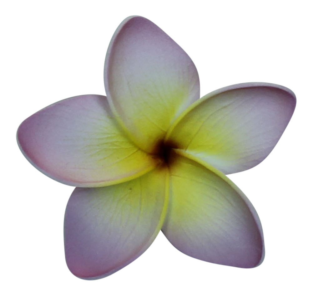 Hawaii Luau Party Dance Artificial Foam Plumeria Hair Clip in Light Purple 8 Pack