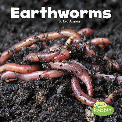 Earthworms (Baby Earthworms)
