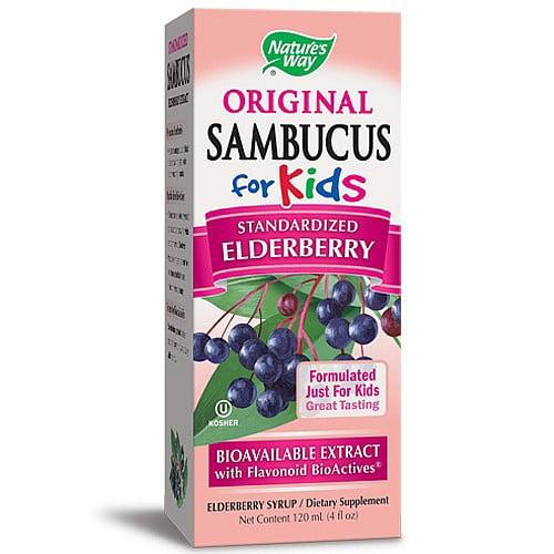 (2 pack) Nature's Way Original Sambucus Standardized Elderberry Syrup for Kids, 4 Oz