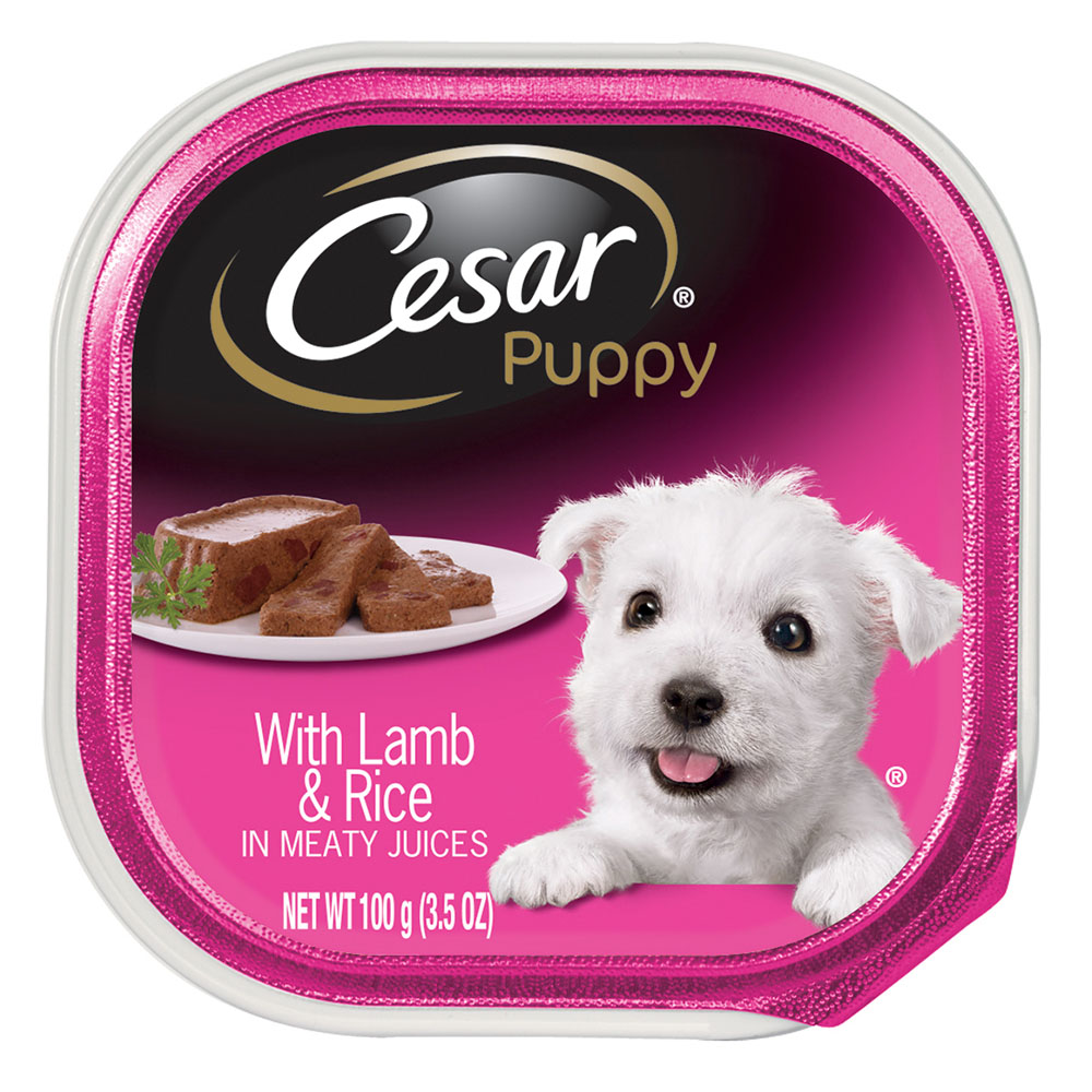 CESAR Canine Cuisine Puppy With Lamb and Rice Puppy Food Tray 3.5 Ounces by Mars Petcare